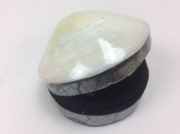 Schelpendoosje parelmoer wit/creme M 7 cm