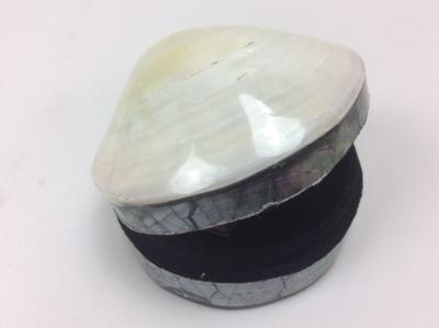 Schelpendoosje parelmoer wit/creme L 10 cm